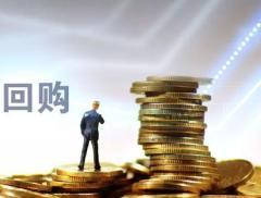 股东希望优化调整回购股份用途  齐心集团:全部用于员工持股计...