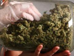 德展健康收购素麻生物20%股权  涉足大麻育种布局日趋完善
