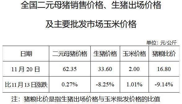 发改委:11月20日生猪出场价格较13日跌8.25% 市场价格或将逐步下降