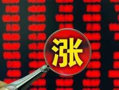 业绩预亏股价却迎三连板 ST罗顿提示风险