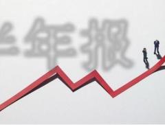 """拆解两市首份半年报:南卫股份净利大增2.6倍,""""抗疫""""营收转..."""