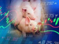 涨涨涨!猪肉价格大涨85.7%,万科跨界养猪正式启动,今年投...