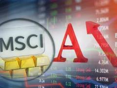 外资又有大动作!5000亿芯片股纳入指数,这些股票也被MSC...