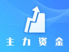 10月15日沪深两市主力资金净流入209.02亿元,加仓电子...